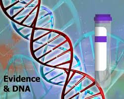 dna_forensic